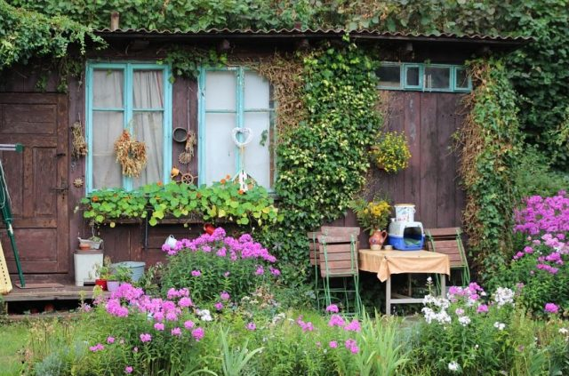 A she shed showing a outside design of how your shed could look on the exterior